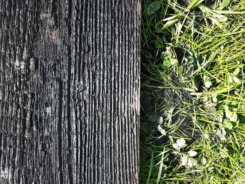 Quel bois utiliser pour shou sugi ban : La technique du bois brûlé.